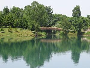 Ponte sul lago Sirino