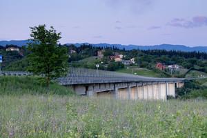 ponte e albero
