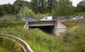 Ciconia-Ponte n.2