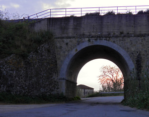 Ponte ferrovia sp35 – Nicotera (VV)
