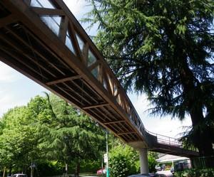 Ponte pedonale