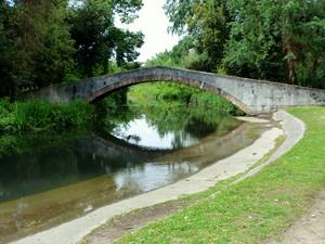 il ponte della pineta a Fiumetto