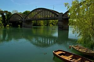 Il ponte e l'anatroccolo