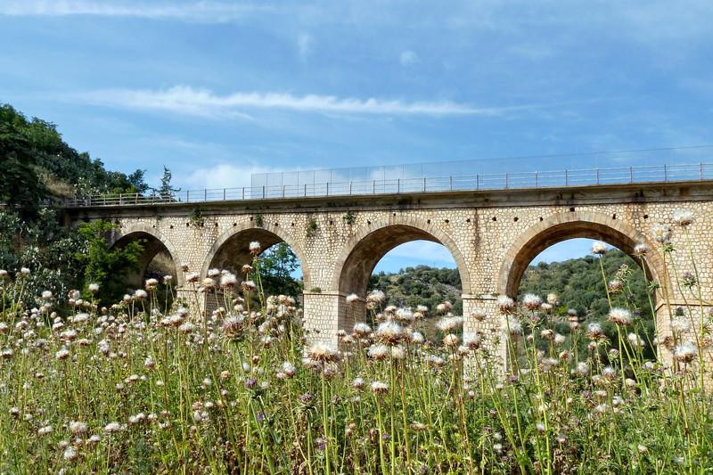 ''Un ponte in erba'' - Cagnano Varano