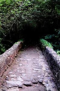 Ponte Romano sul Treja