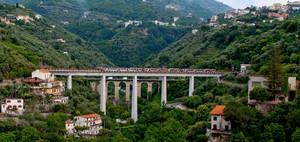 Due ponti ed un treno