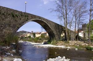 ponte tremulus…..