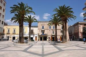 Piazza del Popolo, tra palme e pavimentazione geometrica