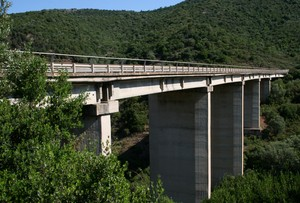 Un ponte tra verde e verde