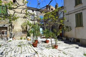 Non auto in piazza, ma pergolato ed altre piante – Piazzetta Felice – Trivento.