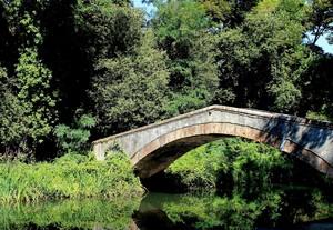 Il ponte della Versiliana