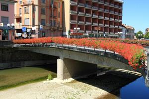 gerani rossi sul ponte