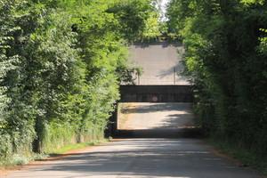 Ponte parabolica