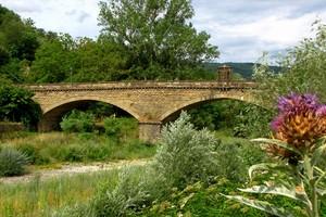 ponte sul fiume Arno