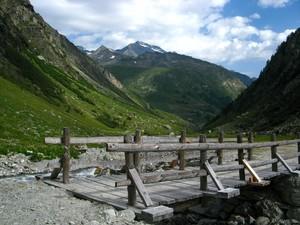 Selvaggia Valgrisenche