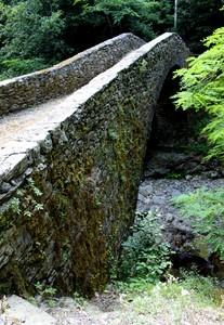 Antico ponte immerso nel bosco