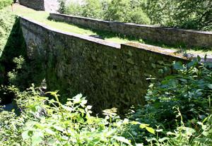 un ponte nascosto nel verde