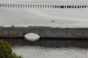 ponte romano sul calik