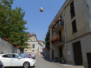 Fiori e auto in piazza Umberto I