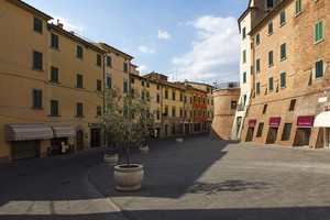 La piazza con gli ulivi