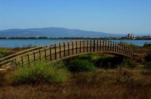Un ponte verso Cabras