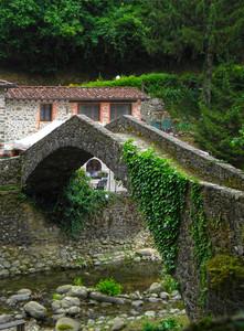 Il ponte al Molino di Ciapo