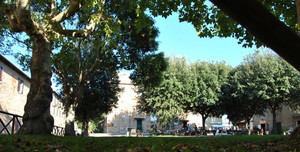 Piazza Alberto – Bolgheri