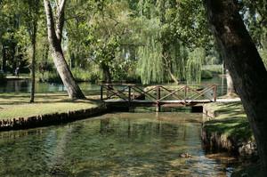 Un'oasi di pace