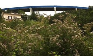 """Viadotto sull'autostrada """"Salerno – Reggio Calabria""""."""