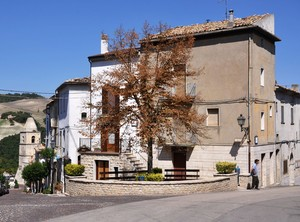 Alberone in Piazza Umberto I ad Alberona!!!