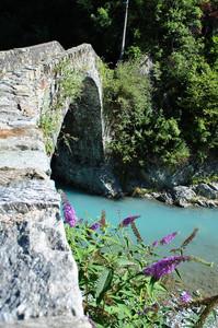 Tra fiori e azzurre acque