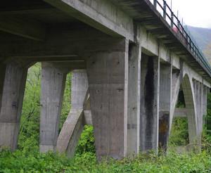 … un arcata centrale e tanti tanti pilastri in cemento armato grigio e triste!