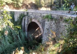 Ponte curvo