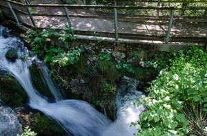 l'impeto della cascata