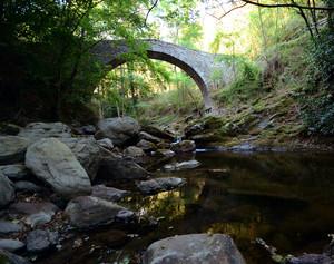 Il Ponte sul Cicana