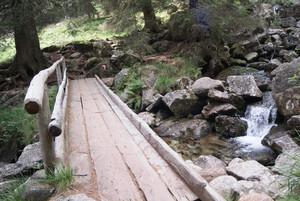 Pieve Tesino (TN): ponte vicino la teleferica del Rifugio Brentari Cima D'Asta