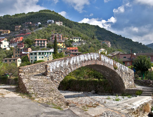 Un'antico ponte sul rio Arbora
