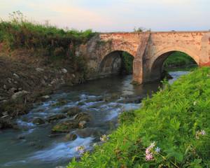 Sotto il ponte la carpa campa