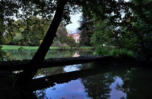 passerella in legno sul laghetto del parco del castello papadopoli
