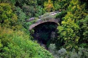 """Così sommerso dal bosco… sarà """"Ponte dell'Imboscata""""?"""