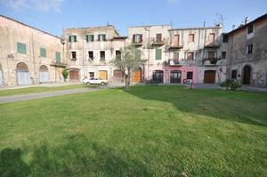 Il verde di Piazza Giuseppe Mazzini, Canino