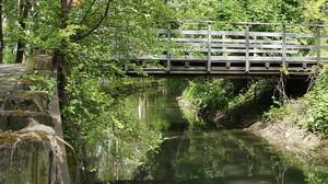 sul canale
