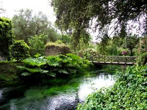 un ponte sulla natura