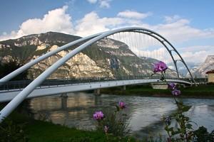 un fiore di ponte
