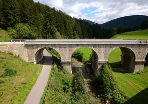Ponte Austroungarico (5)