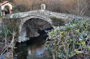 Ponte sul Torrente Varenna