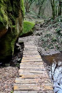 Ponticello sul fosso Molinella