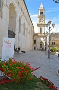 All'Ombra del Duomo