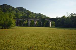 Il ponte in mezzo al grano e ai papaveri