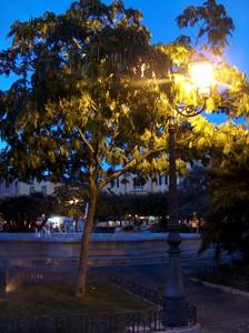Scatto serale di Piazza Municipio